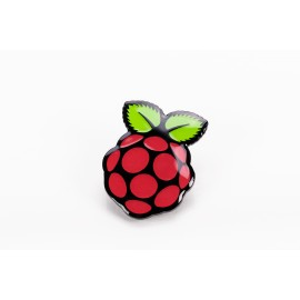 Pins officiel Raspberry Pi